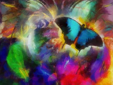 PapillonsSuavi2