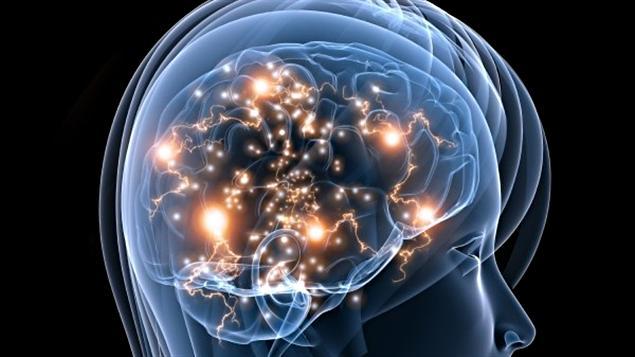 HSP olmak sinir sisteminizin çalışmasıyla ilgili kalıtsal bir özelliktir.