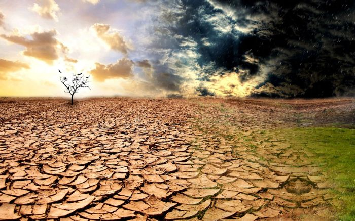 desolate-wasteland-dry-soil-wide
